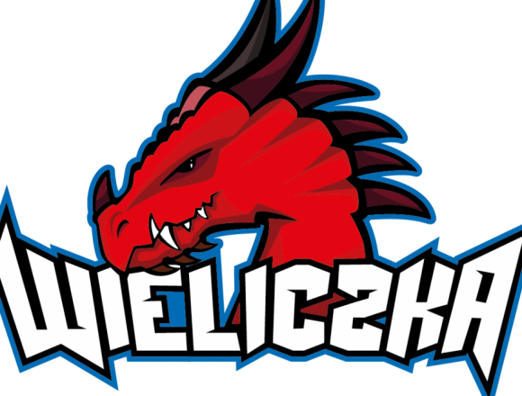 Experienced U.S. Coach in Wieliczka Dragons